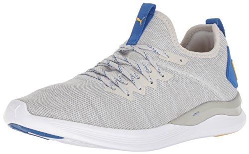 Puma ignite flash evoknit, scarpe running uomo, grigio (glacier gray white-strong blue-spectra yellow 12), 46 eu