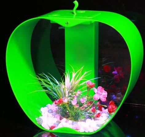 iwish Cleair Mini Apple Tank Green 25L