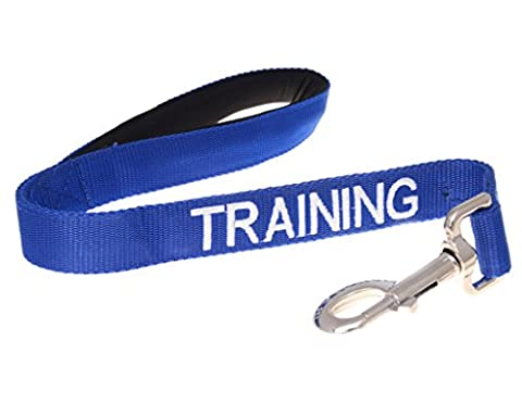 TRAINING (Dog In Training/Do Not Disturb) Blue Colour Coded 60cm