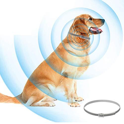 Greatrst Floh- und Zecken-Kontrolle, verstellbar, wasserdicht, schützt Hunde/Katzen, hält für 8 Monate, mit natürlichen Pflanzenextrakten, zur Vorbeugung von Haustieren