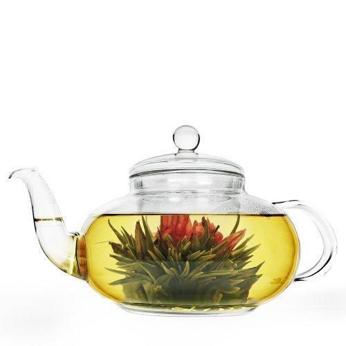 Primula 40 Oz Daisy Teekanne, Glas klar mit Epoca Inc. -