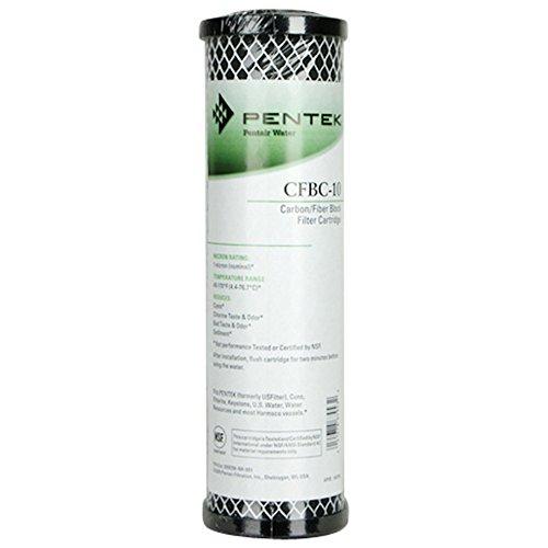 41AlAQ86ppL. SS500  - Pentek CFBC-10 Fibredyne Carbon Block Water Filter