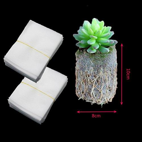 100 pcs Tissu non tissé plantes semis Sacs biodégradables semis d'allaitement Raising Croissance Sacs d'élevage 8x10cm blanc