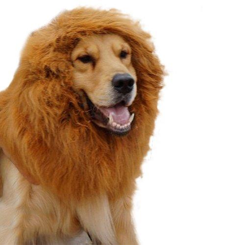 e Mähn Perücke Große Hund Kleider Haar Schal für Hund ()