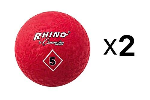 Champion Playground Gym Dodgeball Kickball 5