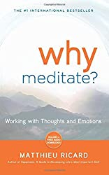 Why Meditate: Working with Thoughts and Emotions by Matthieu Ricard (2010-09-01)