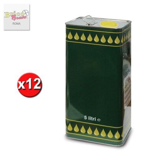 x12 Lattina latta in metallo per olio contenitore 5lt con tappo e maniglia 08012