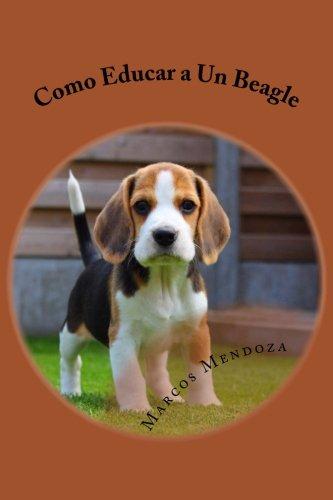Como Educar a Un Beagle por Marcos Mendoza