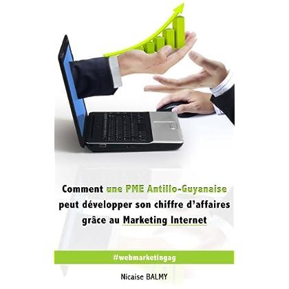 Comment une PME Antillo-Guyanaise peut développer son chiffre d'affaires grâce au Marketing Internet