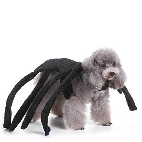 Coppthinktu Hundekostüm, Spinnen-Design, Halloween, Tarantel, Haustier Kostüm, Outfit, Kleidung für Fellspinnen, Small, schwarz (Mystische Kostüm)