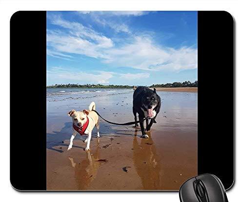 Gaming-Mauspads, Mauspad, Strandhunde Sunny Summer Pet Tier Sand Sea Fun - Sand Parkett
