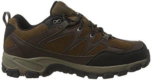 Hi-Tec Altitude Trek Low I Waterproof, Scarpe da arrampicata Uomo Marrone (Braun (dark Chocolate 041))