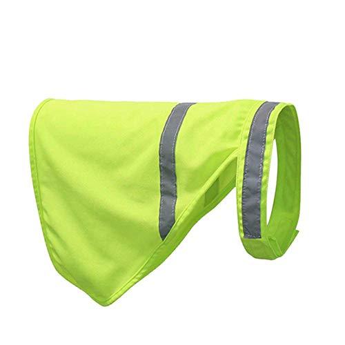 Biback 2 Pack Pet Fluoreszenz Weste einstellbar Reflektierende Fell Hundebekleidung Haustier liefert Zubehör