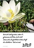 Sprüche und Weisheiten für´ s Jahr (Wandkalender 2020 DIN A3 hoch): Blumen und Sprüche (Planer, 14 Seiten ) (CALVENDO Natur)