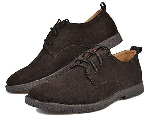 Fangsto  Shoes, Chaussures à lacets garçon homme Café