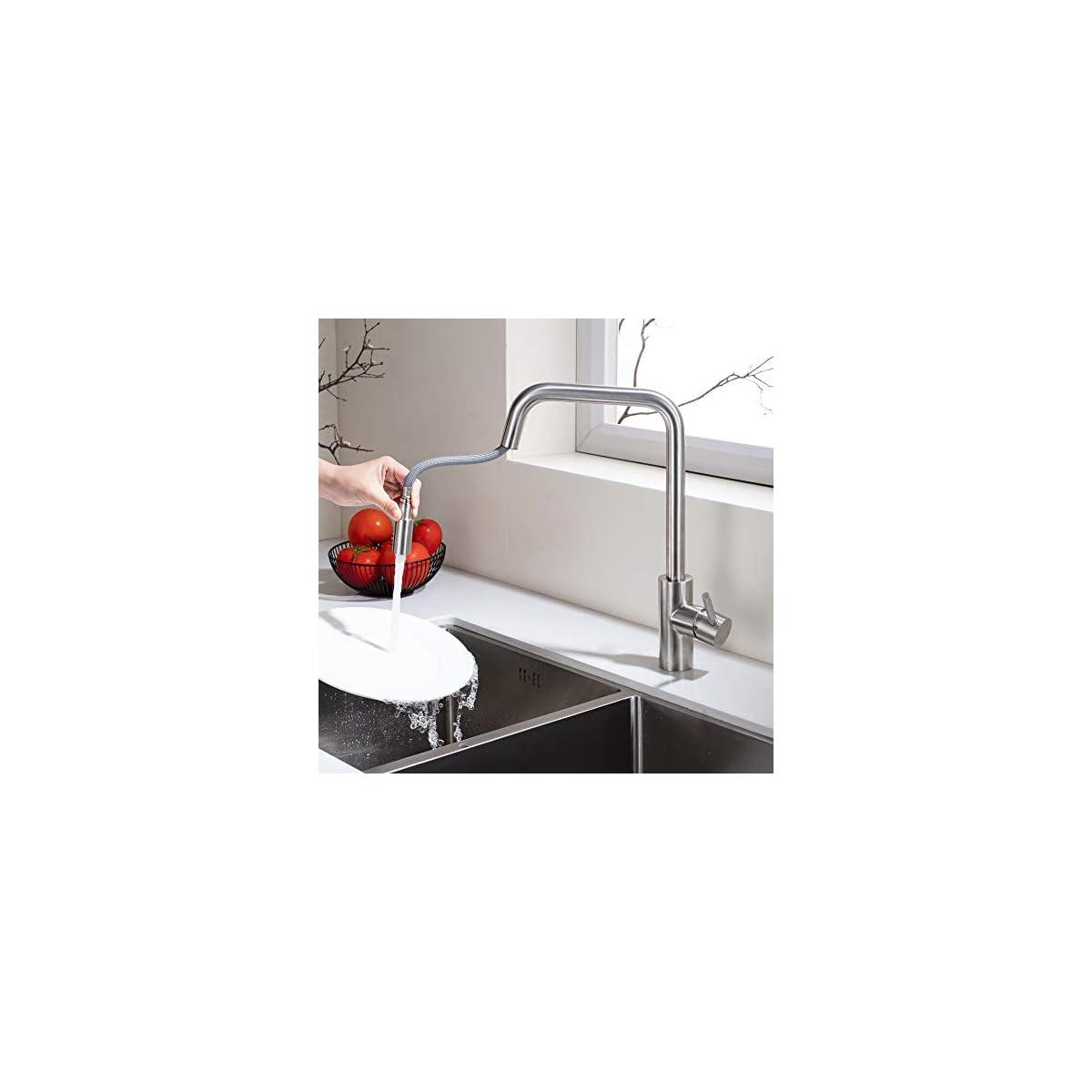 41AmAJ%2BBJJL. SS1200  - HOMELODY Grifo de Cocina 360°Giratorio Extraíble Monomando Agua Fría y Caliente Grifo Cepillado