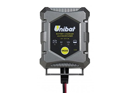Unibat - Caricabatterie e mantenitore di carica per batterie piombo-acido, Gel e AGM da 6 V e 12 V, 1 A