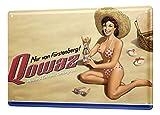 LEotiE SINCE 2004 Blechschild Bier Retro Deko Fürstenberg Retro Werbung Qowaz Strand Bikini Mädel Partykeller Fun Wand Deko 20X30 cm