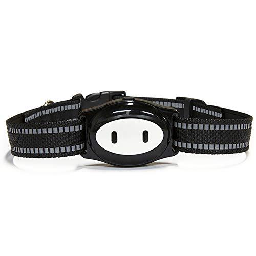 CQ EIN Pet Tracker GPS Hund Katze Halsband Wasserdicht USB-Aufladung -