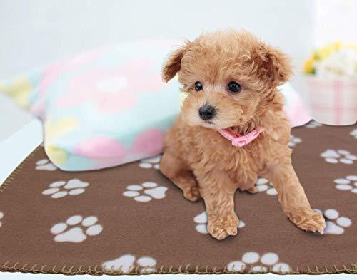 Tappeto Morbido Per Cani : Ak kyc coperta per animali domestici in morbido e caldo copertina