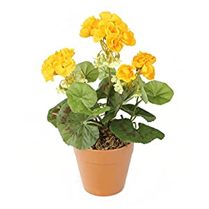 Closer To Nature HBC008YE – Geranio zonal artificial, 24 cm, color amarillo
