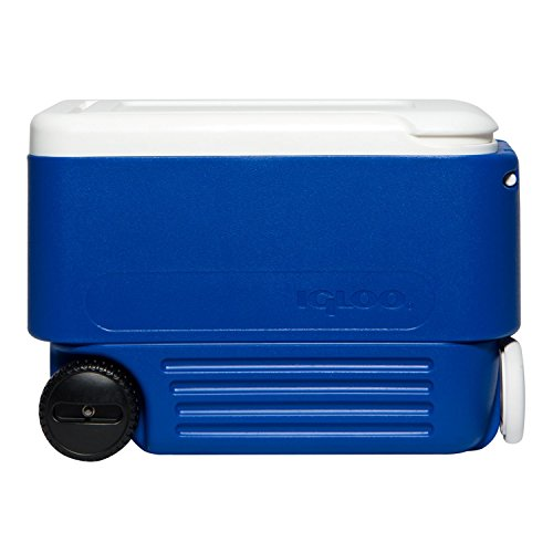 igloo-wheelie-cool-box-holds-53-cans-stain-odour-free-liner-coolbox-45004