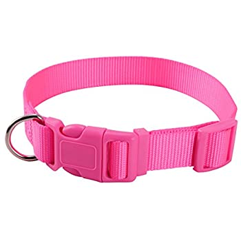Collier Chien Chat Reglable Nylon Clip Sangle Animaux Compagnie Chiot Dressage S rose