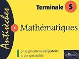 Mathematiques terminale s by Frédéric Laroche (2004-11-16)