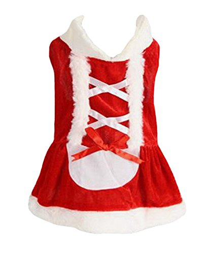 Petitebelle Pet Supply Christmas Costume Dress Santa Claus in Women Dog Dress (Large)