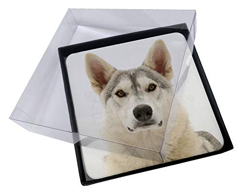 Advanta - Coaster Set 4X Utonagan \Geist der Wolf 'Dog Bild Setzer gesetzt Wolf Coaster Set