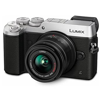 Panasonic Lumix DMC-GX8KEB-S Compact System Camera (20.3 MP, 14-42 mm Lens) - Silver