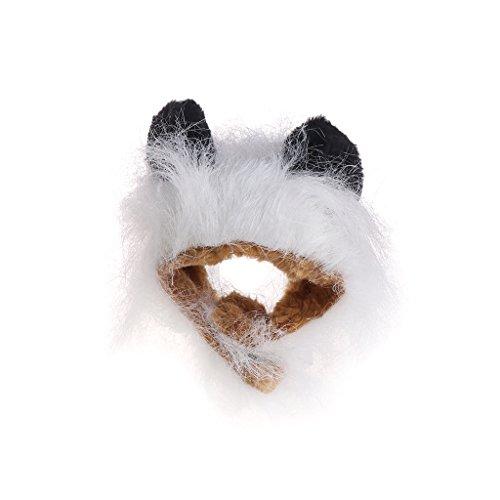 Autone Löwe Haar Kopfbedeckung für Kleine Hunde und Katzen, Löwe Mähne Perücke Puppy Cosplay Kostüm für Halloween Weihnachten Ostern Festival Party Aktivität, Weiß/Schwarz