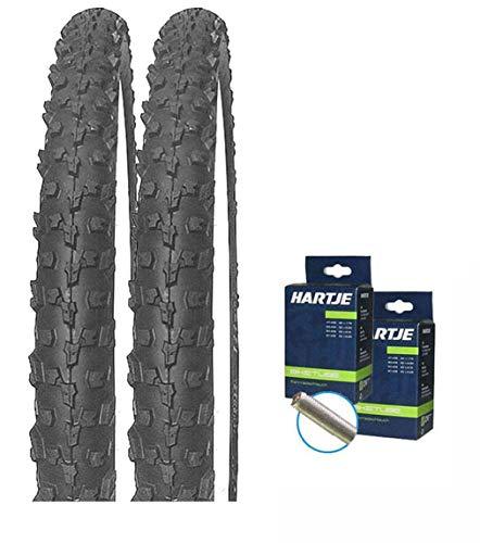 Mitas Set: 2 x Neptune Fahrrad BMX Reifen 20x1.90 (50-406) + SCHLÄUCHE Autoventil