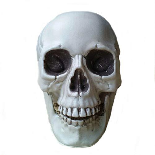 JIAENY Alle Größen-menschlicher Schädel-Kopf-Skeleton Halloween-Art-Stütze Geben Verschiffen Frei Hauptpartei-Dekor-Feiertags-DIY - Alle Feiertage Kostüm