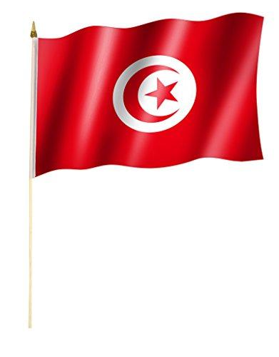 Stockflagge/Stockfahne TUNESIEN Flagge/Fahne ca. 30 x 45 cm mit ca. 60cm Stab/Stock (60 Stab)