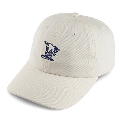 Casquette Burro Strapback Brixton casquette casquette strapback