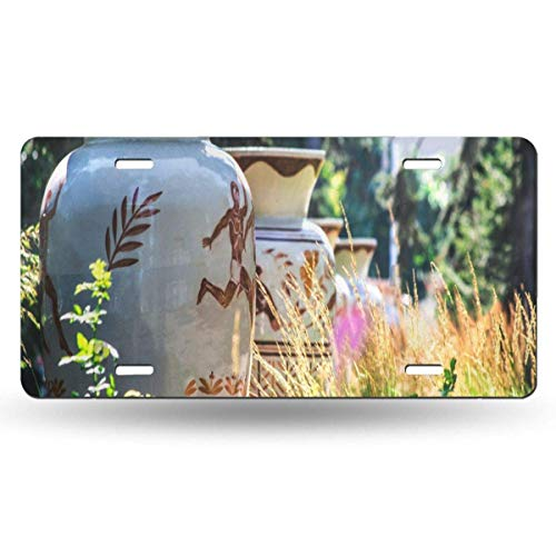 FunnyCustom License Plate Frame White Jugs As A Park Decoration Fantastic Aluminum Metal Tag Holder Waterproof 12 x 6 Inch Decoration - Tag Jug