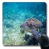 Luancrop Mousepads Tauchen Green Turtle Seashore Tropical Oceanic Island Schildkröte Wildlife Natur...