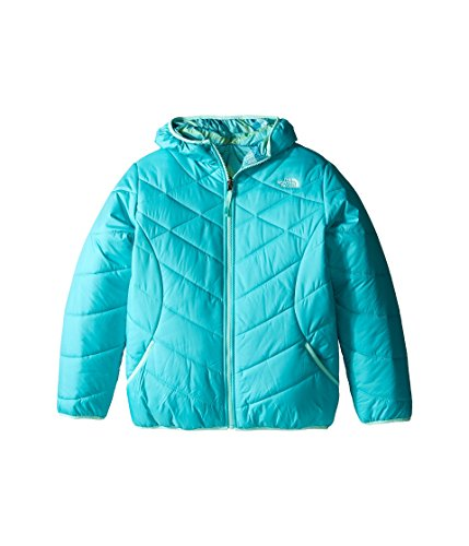 The North Face Kids Girl's Reversible Perrito Jacket (Little Kids/Big Kids) Ion Blue (Prior Season) X-Large The North Face Reversible Jacket