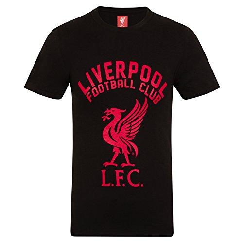 Liverpool FC Herren T-Shirt mit Printmotiv - Offizielles Merchandise - Geschenk für Fußballfans - Schwarz - XXL