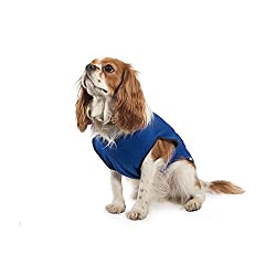 Ancol Pet Products Dog Cooling Vest (Assorted Colours)