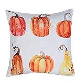 FeiliandaJJ Pillowcase Halloween, kissenhülle Kopfkissenbezug Dekoration Kissenbezug Cartoon Kürbis Super weich Sofakissen für Wohnzimmer Sofa Bed Home,45x45cm (C)