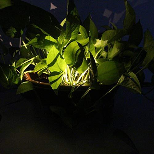 Mitlfuny -> Haus & Garten -> Küche , Dining & BarLED-Solarlicht-Edelstahl-Rasen-Lampen-Garten-wasserdichtes dekoratives Licht-Los