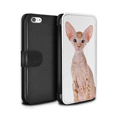 Stuff4 Coque/Etui/Housse Cuir PU Case/Cover pour Apple iPhone 5/5S / Siamois Design / Espèces de chats Collection Peterbald