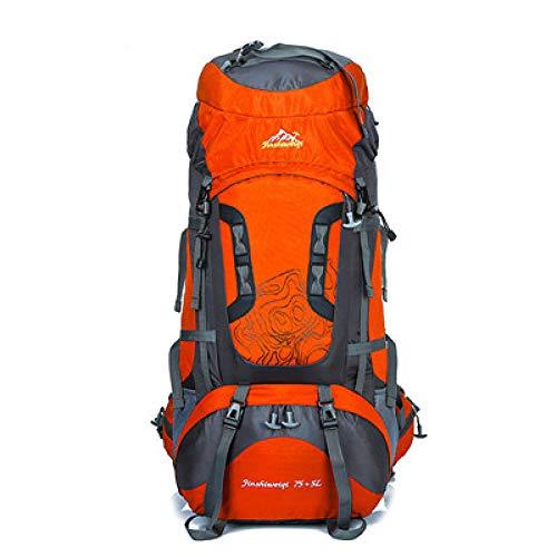 DADZSD 80L Outdoor Bergsteigenbeutel Professionelle Sporttasche Große Kapazität Männer Wandern Rucksack Frauen Reise Camping Tasche YDB03501-Gelbe Farbe_50-70 l