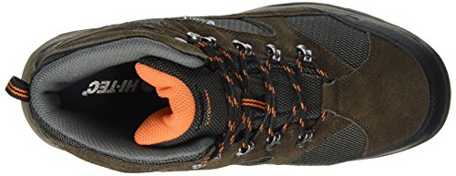Hi-Tec Storm Waterproof Herren Trekking- & Wanderhalbschuhe Braun (Dark Chocolate/dt Taupe/burnt Orange)