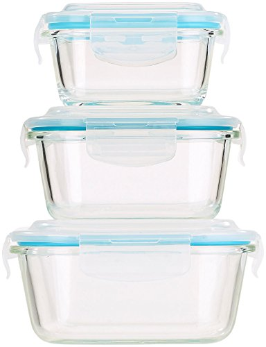 Rosenstein & Söhne Glasdosen: 5in1 Glas Frischhaltedosen Set, 6 tlg, Clip-Deckel, -40 bis +400 C° (Vorratsdosen Glas) (Aufbewahrungsbox Glas)
