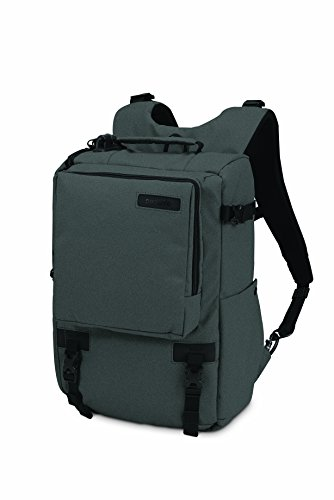 pacsafe-z16-charcoal-camsafe-carrying-case-for-cameras-charcoal