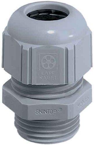 Preisvergleich Produktbild Lapp SKINTOP ST-M 25x 1,5RAL 7001SGY Polyamide Silver Cable Gland–Cable Glands