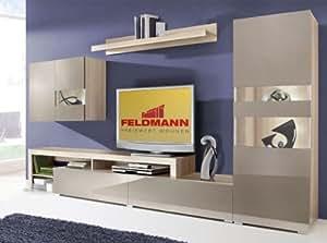 wohnwand anbauwand 165100 esche grau cappuccino hochglanz k che haushalt. Black Bedroom Furniture Sets. Home Design Ideas